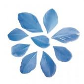 Plumes coupées, 5-6cm, bleu clair, 36pcs