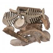 Esqueleto de pez y madera flotante