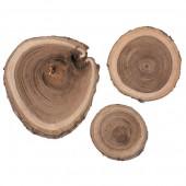 Rondelles de bois de bouleau, 3-6cm, 80g