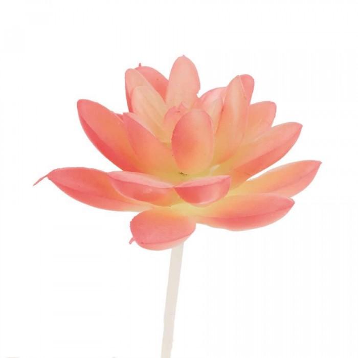 Succulente artificielle- Echeveria rose 8cm