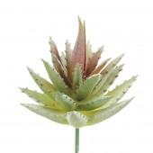 Succulente artificielle- Aloe 7cm