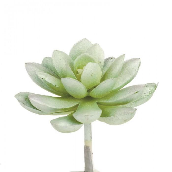 Succulente artificielle- Echeveria 7cm
