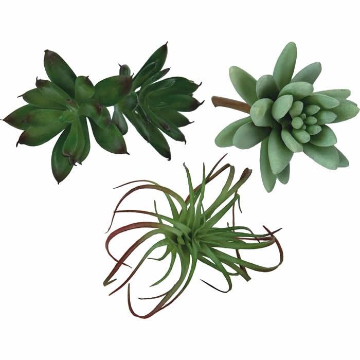 Succulentes artificielles- 8-12cm, assortiment