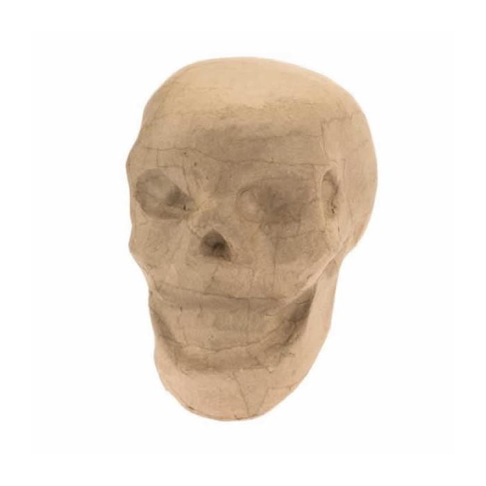 Cardboard Skull 15cm