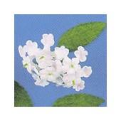 Mini fleurs et feuilles, rose