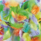 Mix de plumes pastel, 3 à 10cm, 10g