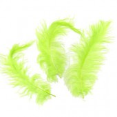 Light green Feathers, 5g