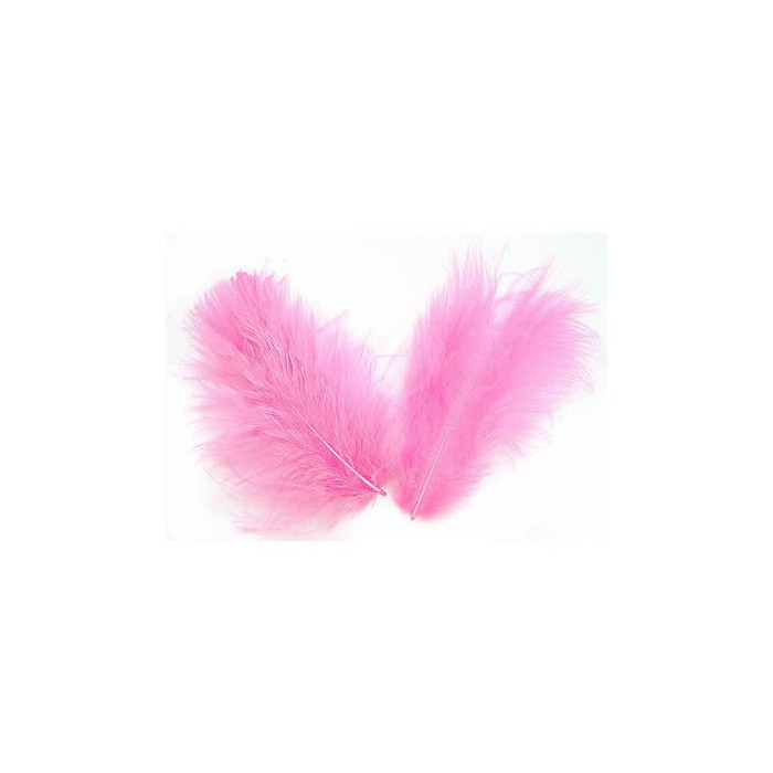 Light pink Feathers, 5g
