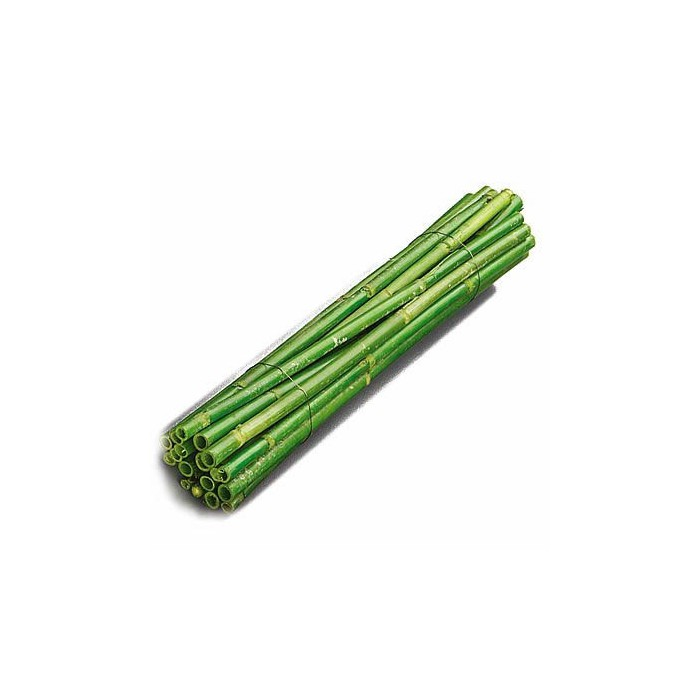 Wooden sticks, 40cm, green, 5 pcs