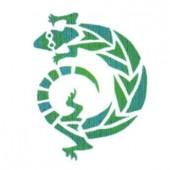 Stencil Lizard