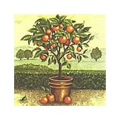 Napkin orange tree, 1 piece