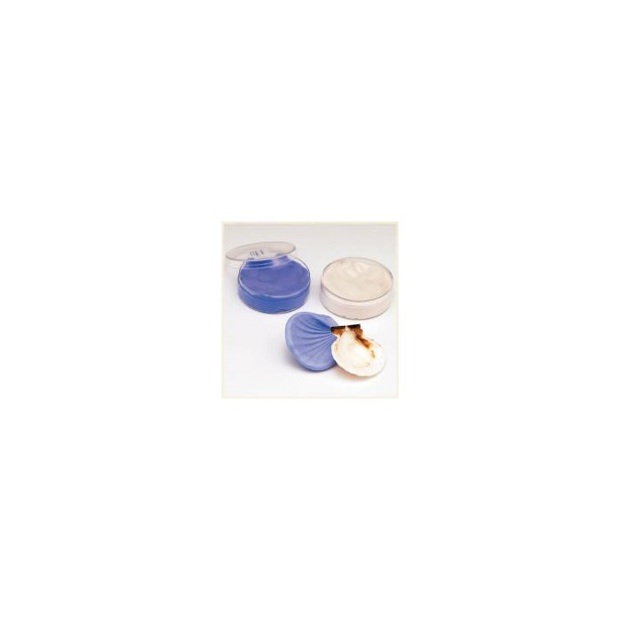 Silicone Moulding Paste, 80g