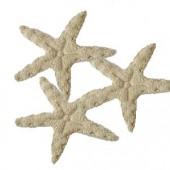 Etoiles de mer en feutre beige
