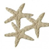 Sea stars, beige felt