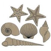 Shells, 6 pcs, 4.5x4cm