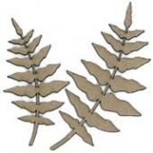 Fern fronds, 2 pcs,4.5-6x9-11.5cm