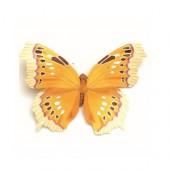 Papillon avec clip, 8cm, jaune/blanc