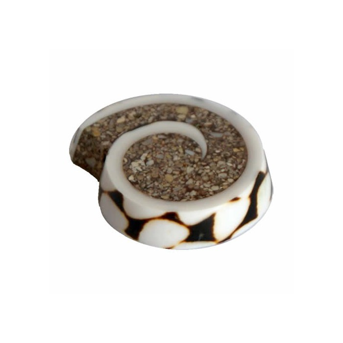 Pendant shell, brown, 30-55mm, 1 pce
