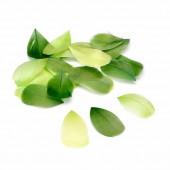 Plumes 5-8cm, mix vert, 48 pcs