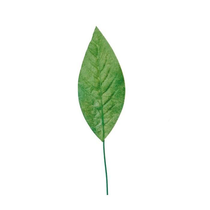 Beech tree leaves, 8cm, 24 pces