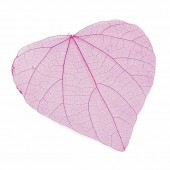 Skeleton Leaves, 10 pcs, pink