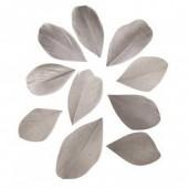 Plumes coupées, 5-6cm, gris clair, 36pcs